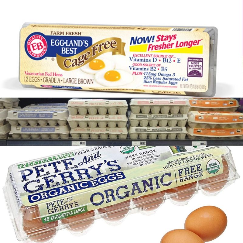 store-bought-egg-cartons